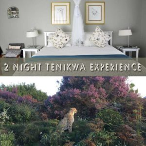 2 Night Tenikwa Experience with accommodation, meals and activities