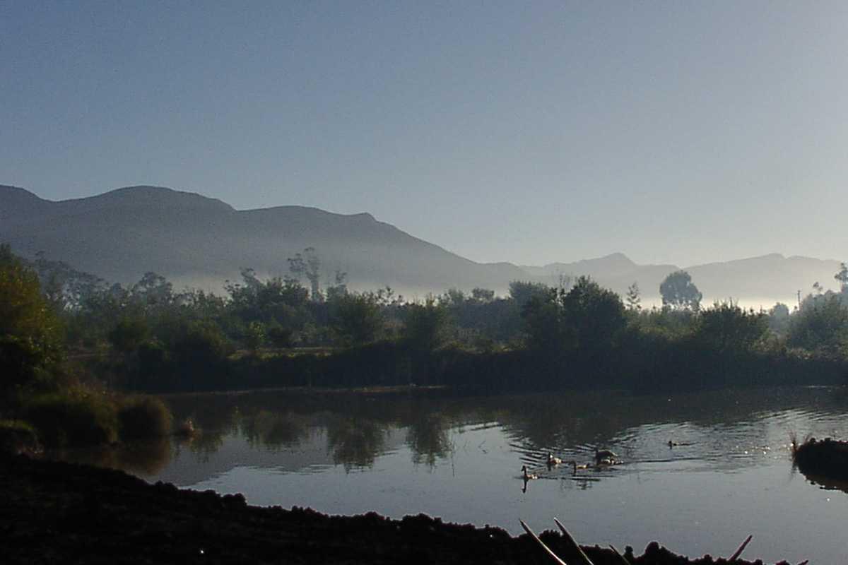 Dams at Tenikwa