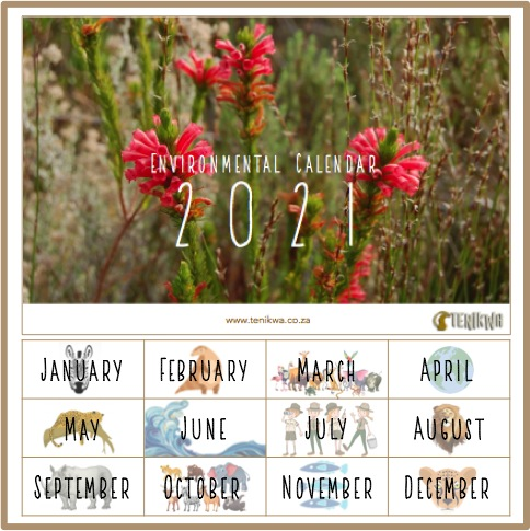 Donate towards rehabilitation and receive this environmental calendar 2021 to print