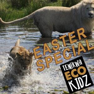 EcoKidz Easter Special