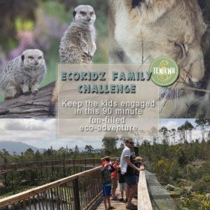 Ecokidz Family Challenge Program at Tenikwa