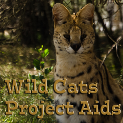 Digital collection of project aids for wild cats of South Africa