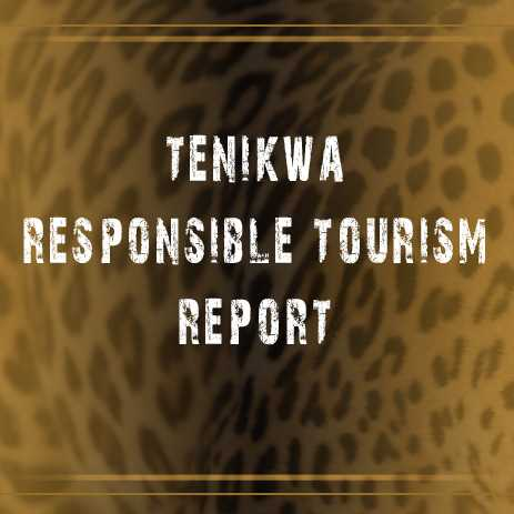 Responsible Tourism Report 2016