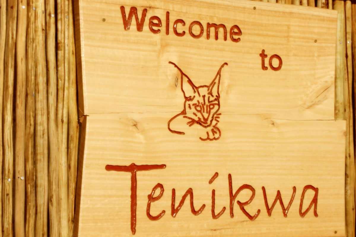 Tours at Tenikwa