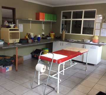 Tenikwa Wildlife Hospital